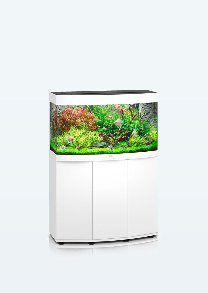 JUWEL Vision 180 LED aquarium from Juwel products online in Dubai and Abu Dhabi UAE