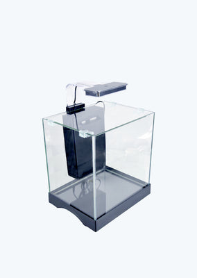 Mini Tank with Filter and LED Light aquarium from Discus.ae products online in Dubai and Abu Dhabi UAE