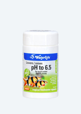 Waterlife 6.5 Buffer water from Waterlife products online in Dubai and Abu Dhabi UAE