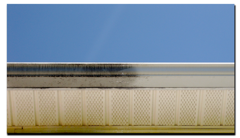 "Gutter-Brite Removes the ""Tiger Striping"" Streaks and other hard to remove stains from Aluminium Gutters"