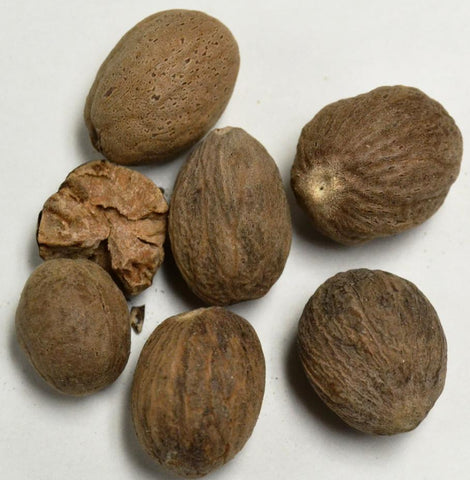 Nutmeg Whole* - Dragon Herbarium