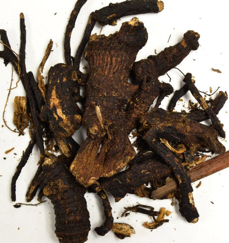 Osha Root - Dragon Herbarium