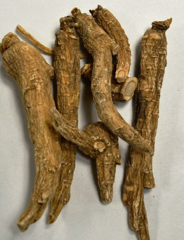 Ginseng Root (White American)