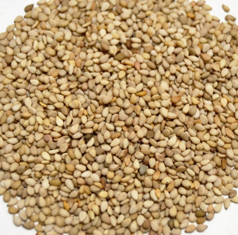 Sesame Seeds (Natural) Whole (OG) (SESAMUM INDICUM ALBUM) - Dragon Herbarium
