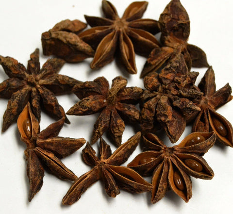 Star Anise - Dragon Herbarium