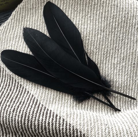 Feathers - Natural & Dyed