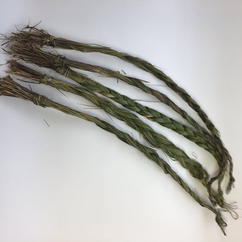 Sweetgrass Braid - Dragon Herbarium