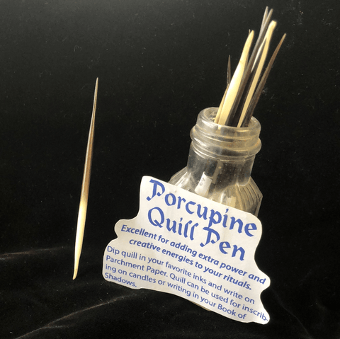Porcupine Quill