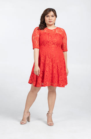 Plus Size Lace Quarter Sleeve Flare Dress