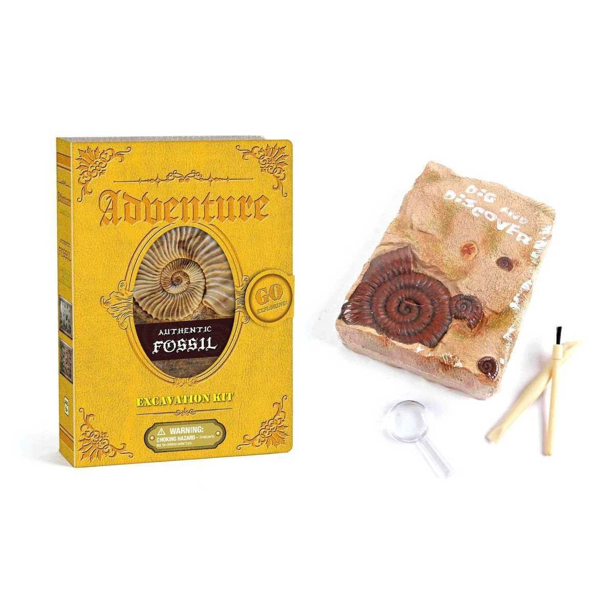 Authentic Kids Fossil Excavation Kit Kaper Kidz Art and Craft Kits at Little Earth Nest Eco Shop