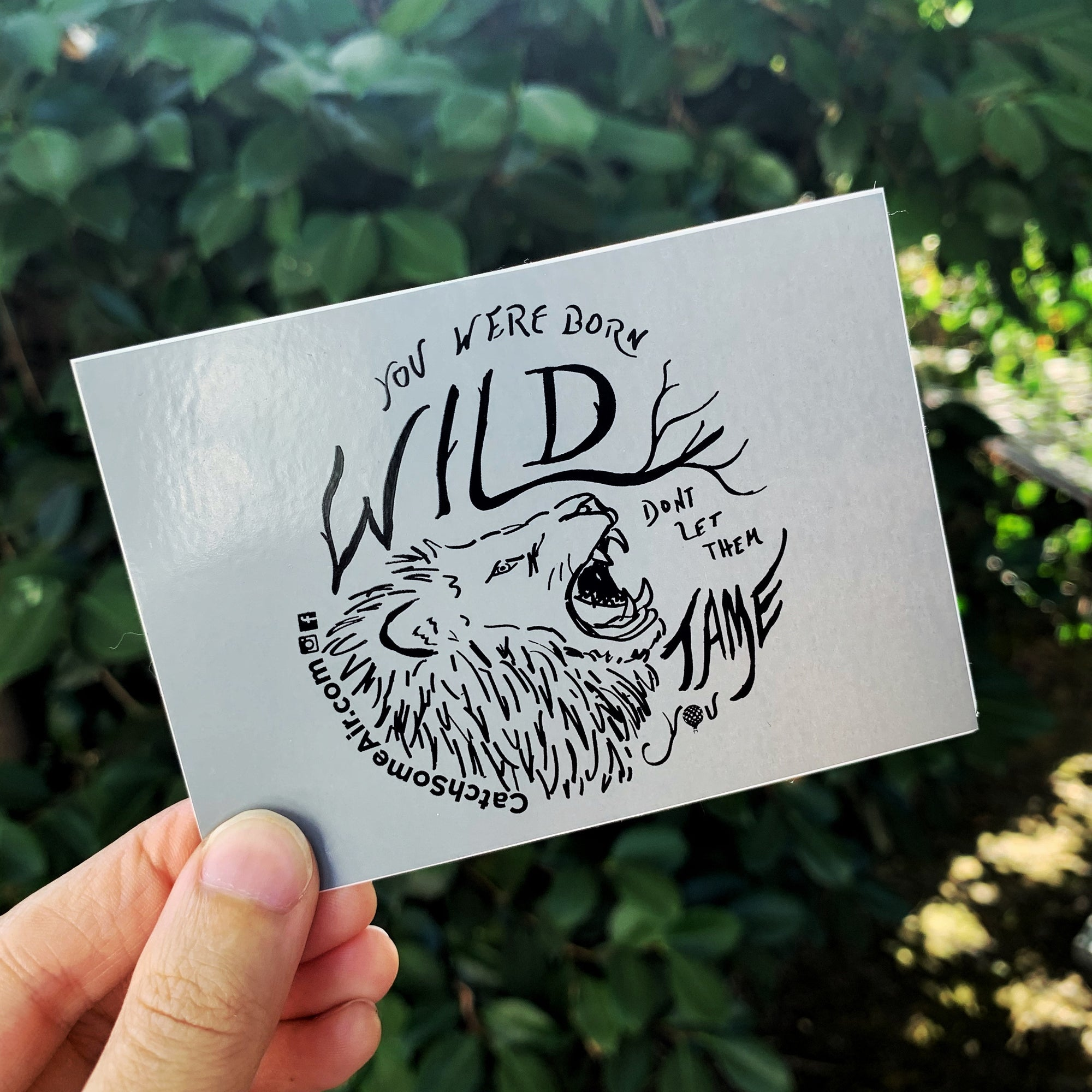 You were BORN WILD, don't let them TAME YOU | sticker