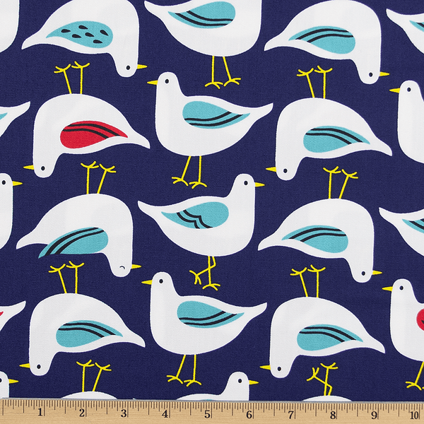 Sea Birds in Navy