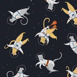 Cats in Space in Navy