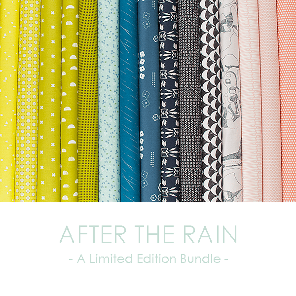 After the Rain - A Limited Edition Bundle