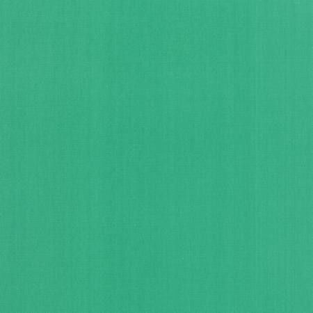Bella Solids in Spearmint