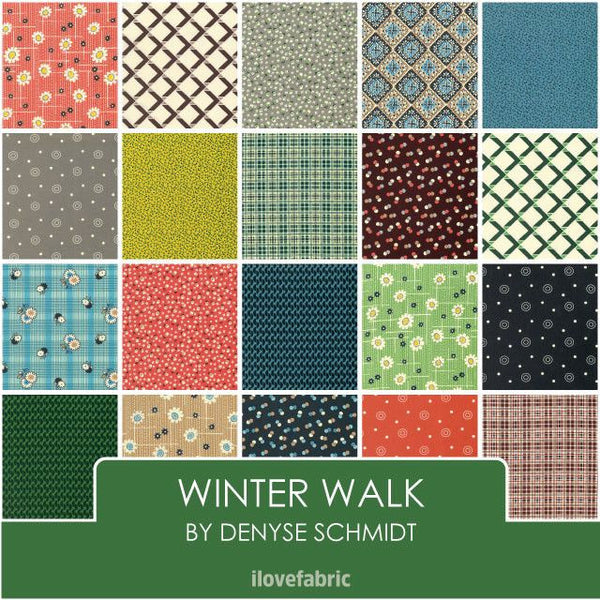 Winter Walk by Denyse Schmidt