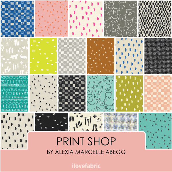Print Shop Fat Quarter Bundle
