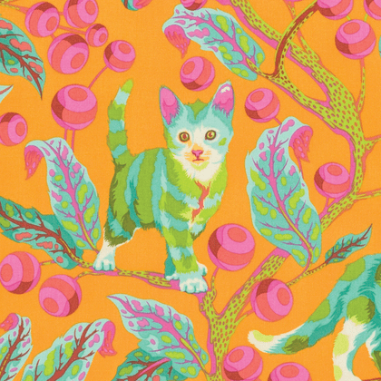 Disco Kitty in Marmalade Skies