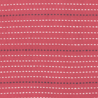 Dotted Line in Coral