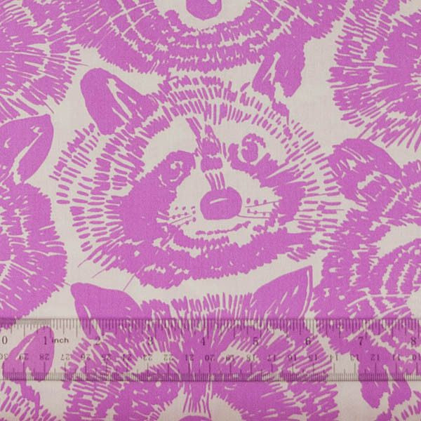 Rocky Racoon in Pink