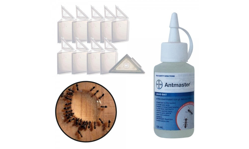 Black Ant Control Kit - Basic