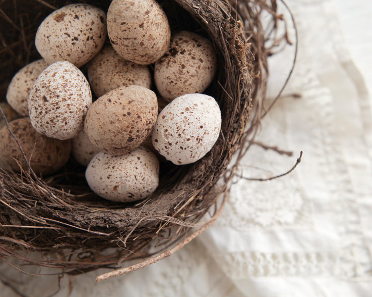 Tutorial: Spun Cotton Quail Eggs