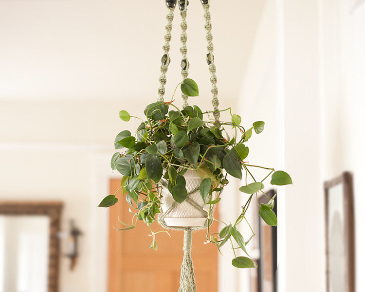 Macrame Plant Hanger   Craft Tutorial With Easy Macrame Knots U2013 Smile  Mercantile Craft Co.