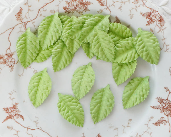Paper Leaves - Embossed Die Cut Mulberry Paper Leaf Shapes, Spring Green, 24 Pcs.