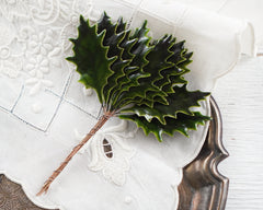 Holly Leaves - Vintage Style Lacquered Paper Holly Leaf Christmas Stems, 12 Pcs.