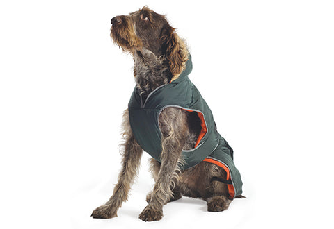 ANCOL PARKA DOG COAT