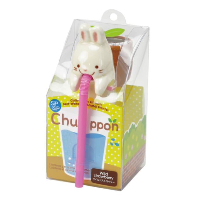 Chuppon (Cat, Panda, Pig, Rabbit) - Urban Treehouse
