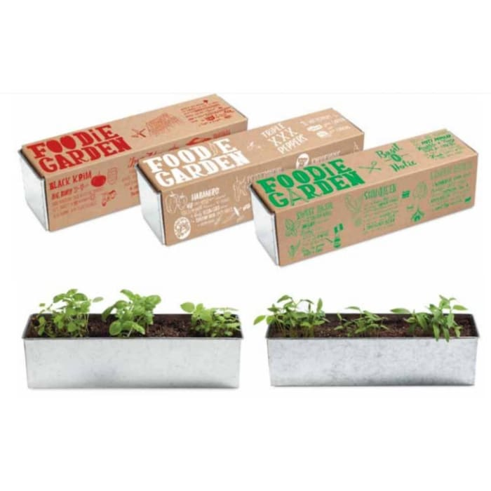 Foodie Garden Kit (Basil, Tomato, Pepper) - Urban Treehouse