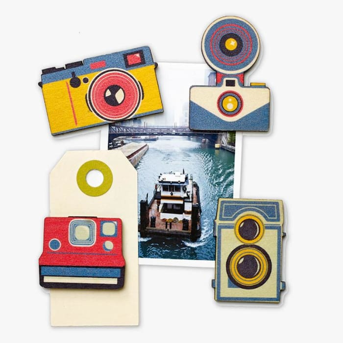 Shutterbug Magnets (Set Of 4) - Stationary