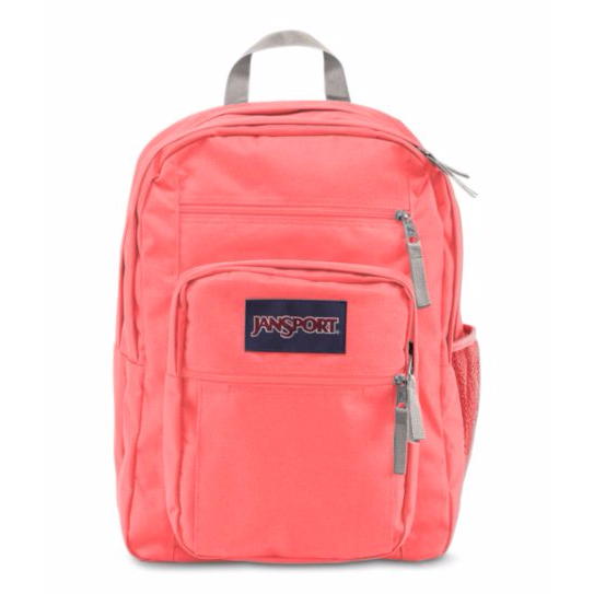 Big Student Backpack Coral Sparkle