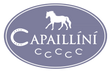 Capaillíní Equestrian Collection