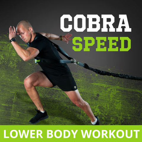 GUN-eX Cobra Speed
