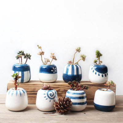 Set of 8 Mini Ceramic Succulent Plant Pots