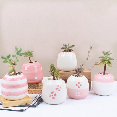 Set of 6 Mini Ceramic Succulent Plant Pots