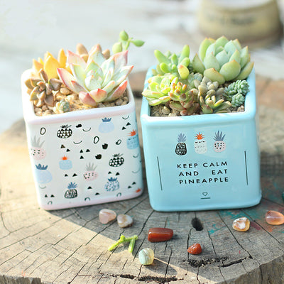 Set of 2 Hand Painting Flower Plant Pots