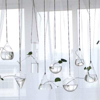 Hanging Hydroponic Glass Vase Plant Pot