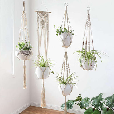 Plant Holder - 4 Packs Different Designs