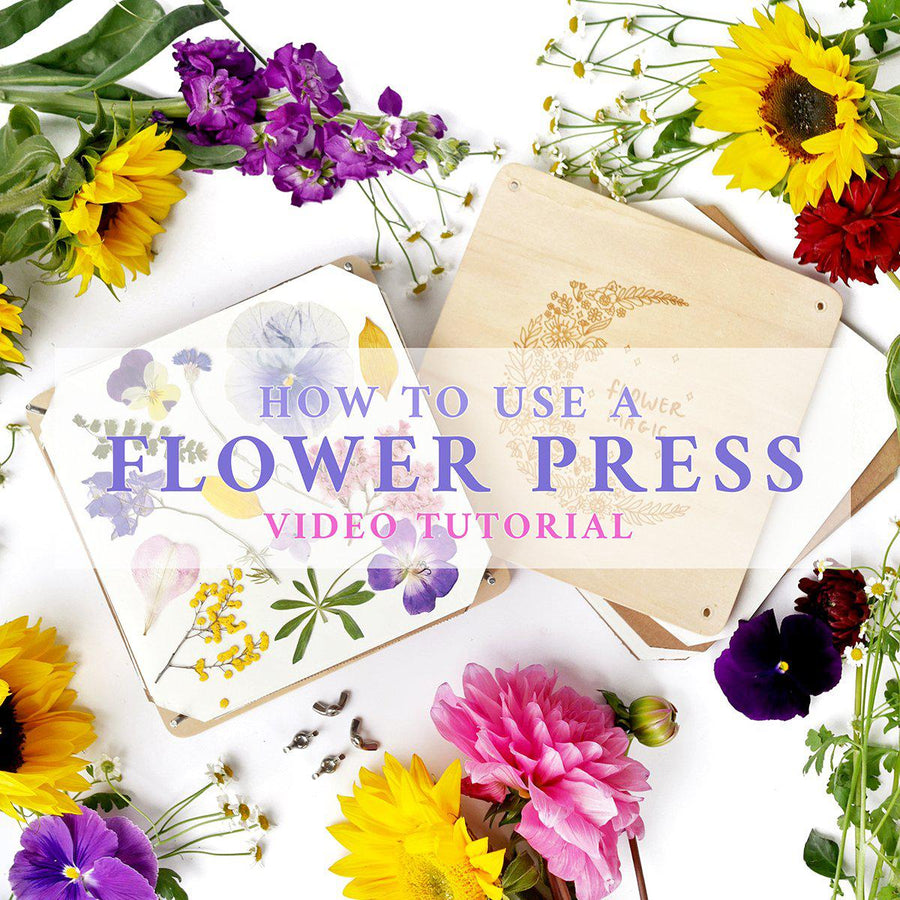 'Flower Magic' Botanical Flower Press Kit - The Quirky Cup Collective
