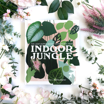 Indoor Jungle - The Quirky Cup Collective