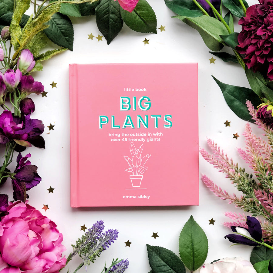 Little Book, Big Plants - The Quirky Cup Collective