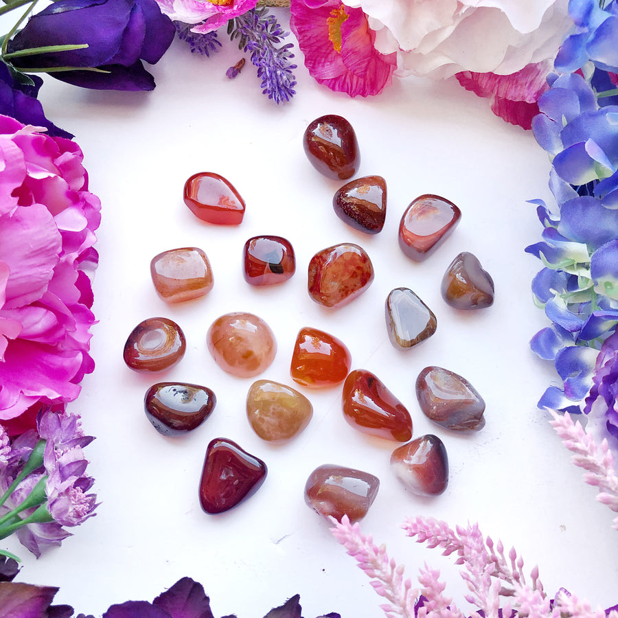 Carnelian Tumbled Stones - The Quirky Cup Collective