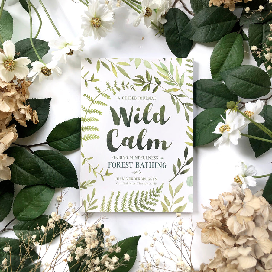 Wild Calm - The Quirky Cup Collective