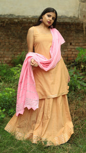 Honey flared skirt kurta 2 pc set