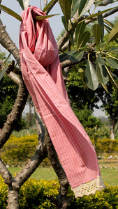 Pink striped stole online at bebaakstudio.com