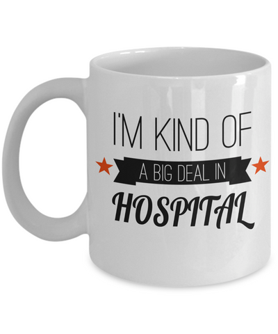 Best Nurse Gifts For Woman - Nurse Gifts - Funny Nurse Mug - I am Kind of a Big Deal In Nursing Hospital - Coffee Mug - YesECart