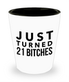 Shot Glasses Birthday Girl- 21 St Birthday Gifts Idea- 21 Birthday Gifts For Her- Just Turn 21 Bitches - Shot Glass - YesECart